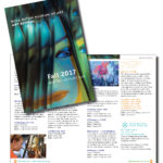 Boca Raton Museum of Art School Catalog